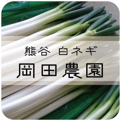 【埼玉】熊谷のこだわり白ネギ 岡田農園