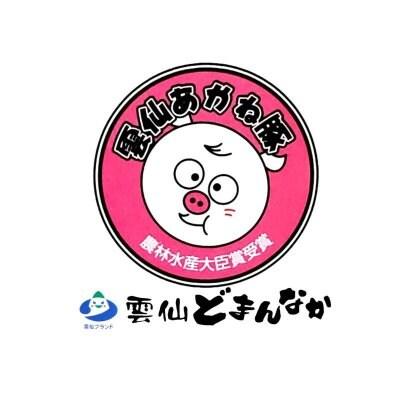 雲仙あかね豚「雲仙どまんなか」長崎県雲仙市のブランド豚