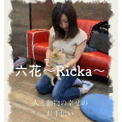 動物と人に優しい未来を 六花      Ricka