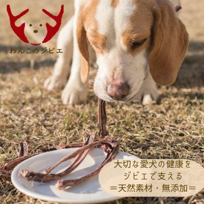 『わんこのジビエ(鹿・猪)』無添加・100%天然素材ドッグフード(犬用おやつ)専門の店