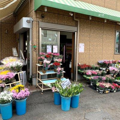 東京都東村山市秋津町のお花屋さん 秋津フラワー