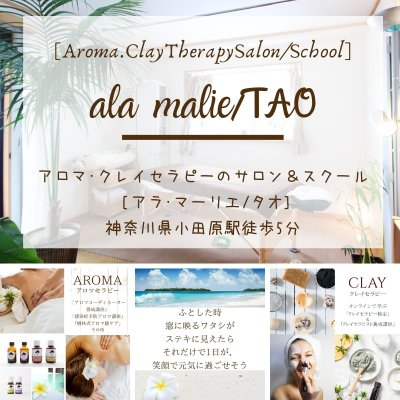 カラダの調子を整える全力サポート[ala malieアラ・マーリエ] 貴女のカラダを組み立てるスキル・リピ率UPのセラピスト育成 [TAOタオ] アロマ・クレイセラピーのサロン&スクール