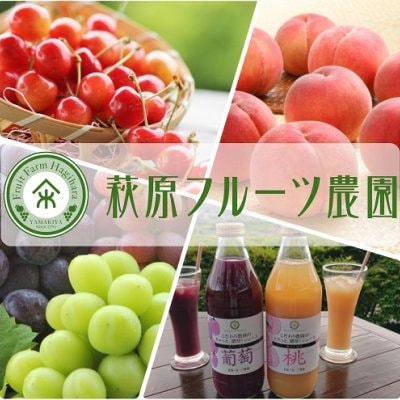 さくらんぼ・もも・ぶどう 季節限定おいしい山梨 萩原フルーツ農園
