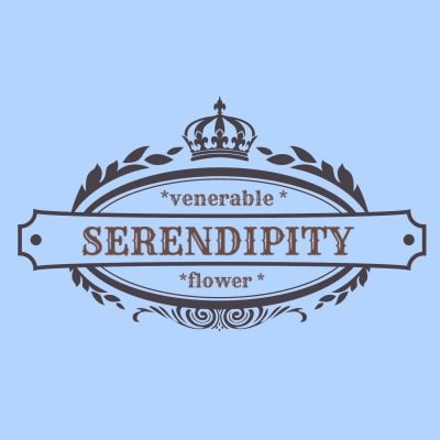 横浜 |SERENDIPITY*     【Flower Design&雑貨専門店】