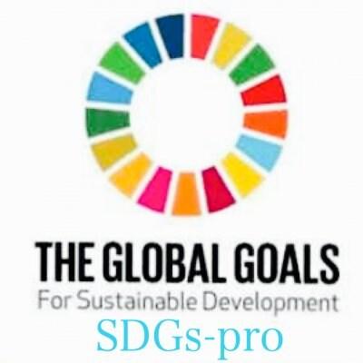 SDGs×ビジネスをデザイン/SDGs-pro/エスディージーズプロ