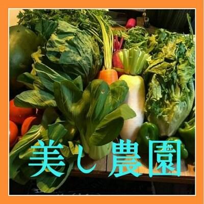 ″ 美し農園 ″うましのうえん  こだわりの土でできた  安心、安全な野菜・米