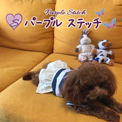 purple-stitch/パープル・ステッチ