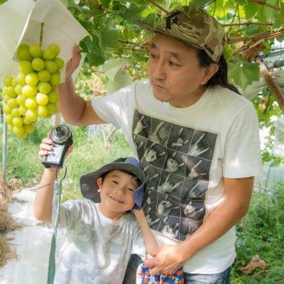 おいしい果実シャインマスカット【KM FRUITS JAPAN】|低農薬フルーツ通販