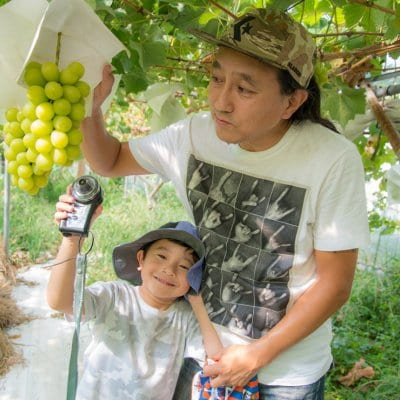 KM FRUITS JAPAN|さいたま見沼果樹フルーツ直販