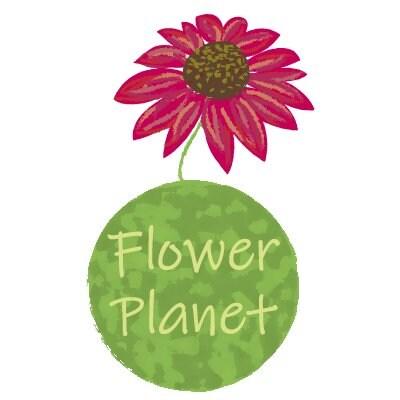 Flower Planet フラワープラネット / フラワーエッセンス 花療法
