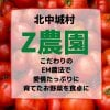 EM農法こだわりの土作り|新鮮野菜|Z農園