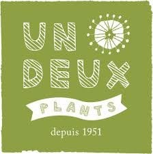 UN DEUX PLANTS 広島 全国の産地から仕入れる「切り花」や「鉢物」は色合いも花持ちも鮮度もバツグン!季節感あふれる「花」と「緑」でいっぱいライフスタイルをお手伝い!