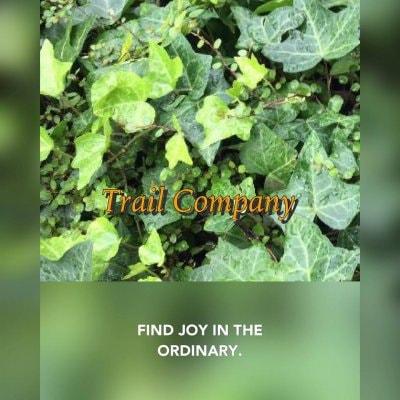 Trail Company
