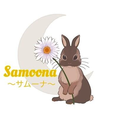 宇宙数秘〜数字とカラーで色鮮やかな人生を〜 Samoona