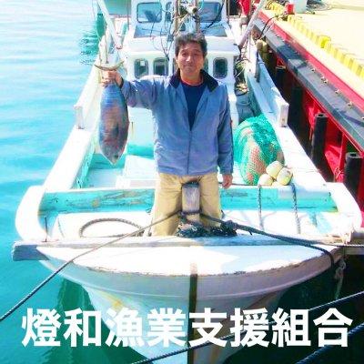 漁師直送/五島列島小値賀のおさかな直販