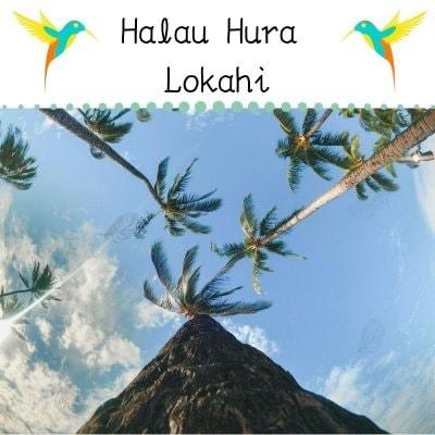 Halau Hura Lokahi ハーラウ フラ ロカヒ