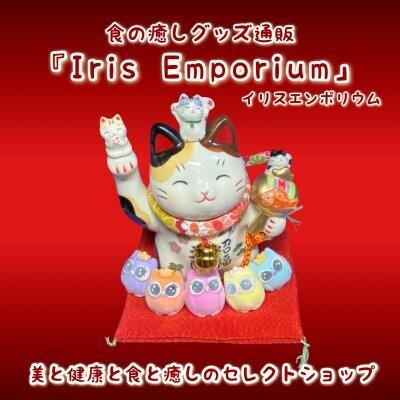 癒しグッズ通販/キラキラしたモノ・コト・食のセレクトショップ『Iris Emporium/イリスエンポリウム』