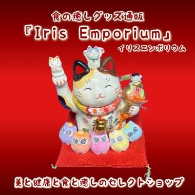 『Iris Emporium/イリスエンポリウム』