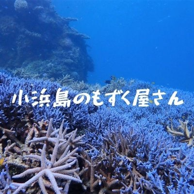 沖縄より最高の食感をお届け!! / 小浜島のもずく屋さん