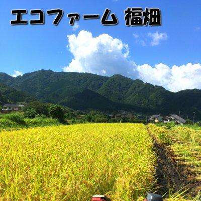 稲わら由来の超自然派アルカリ洗浄液
