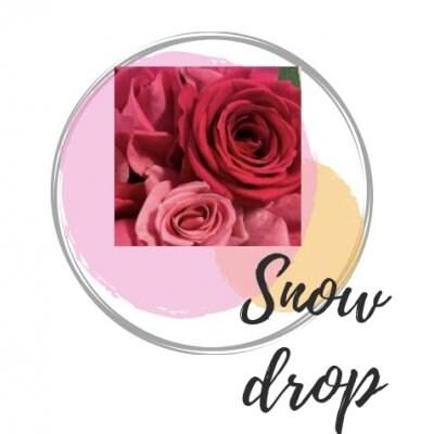 Snow drop(スノードロップ) 沖縄県 名護 いけばな お花教室 個人レッスン 趣味 女性専用 自分磨き 着付け うちな〜かんぷー 写真
