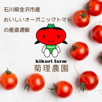 石川県金沢市【菊理農園】