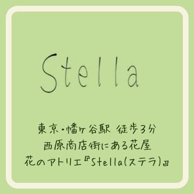 Stellaステラ/フラワーショップ/ 通販/渋谷 幡ヶ谷/ワークショップ