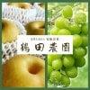 鶴田農園【梨・葡萄の産直販売】