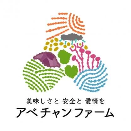 栃木県宇都宮市で無農薬・無化成肥料・無除草剤で食べる人の為になる元気になる美味しい野菜を作っているアベチャンファーム