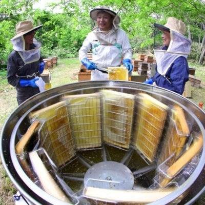 美味しい国産はちみつなら三次はちみつ園 蜂家