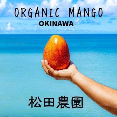 松田農園┃マンゴー・アテモヤ・パッションフルーツ栽培