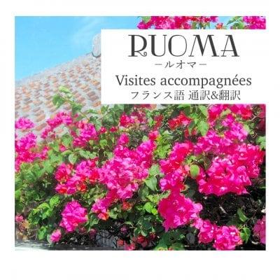 フランス語翻訳をサポートする「RUOMA/ルオマ」