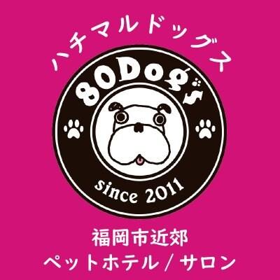 福岡県のペットホテル・サロン80Dog's【ハチマルドッグス】