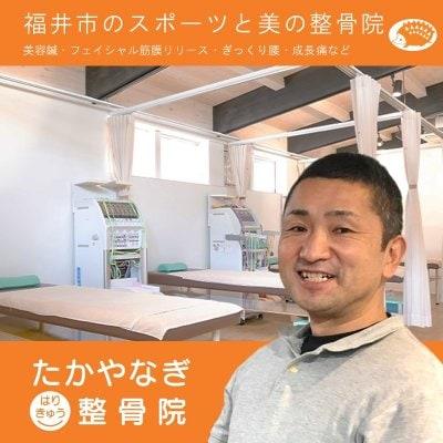 福井市たかやなぎはりきゅう整骨院