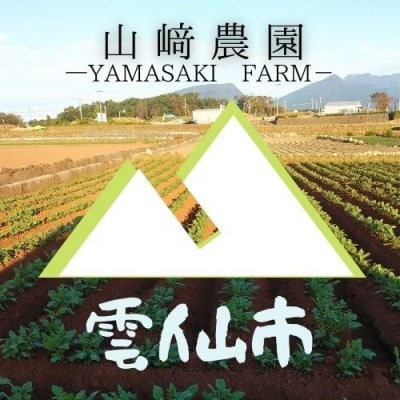 雲仙 山﨑農園