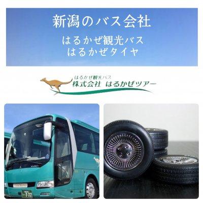 新潟のバス会社〜はるかぜ観光バス/はるかぜタイヤ〜