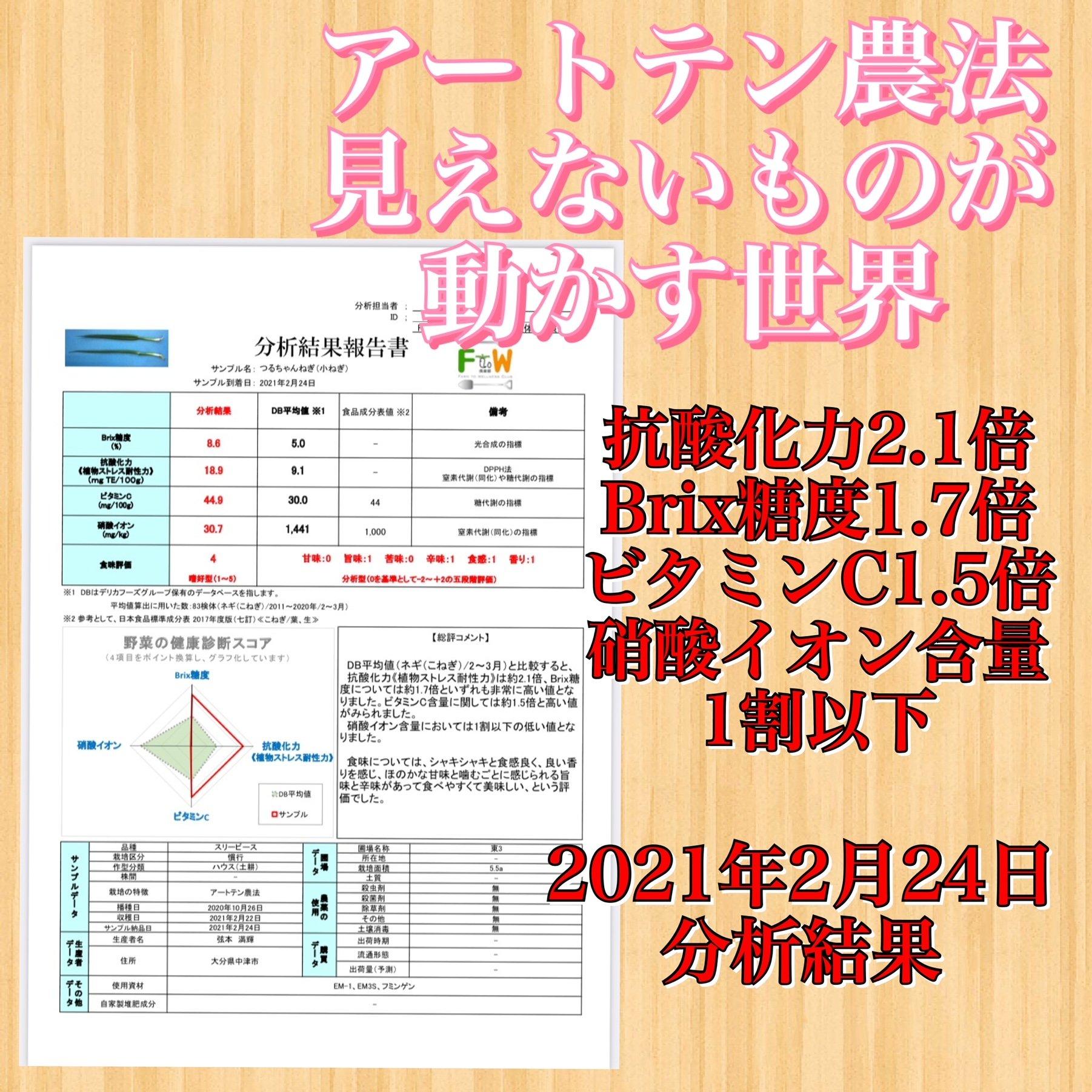2021/2/24 野菜の分析結果