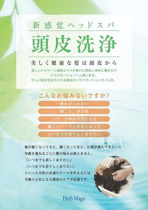ハーブマジック 頭皮洗浄システム
