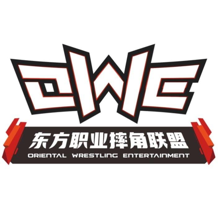 OWE JAPAN