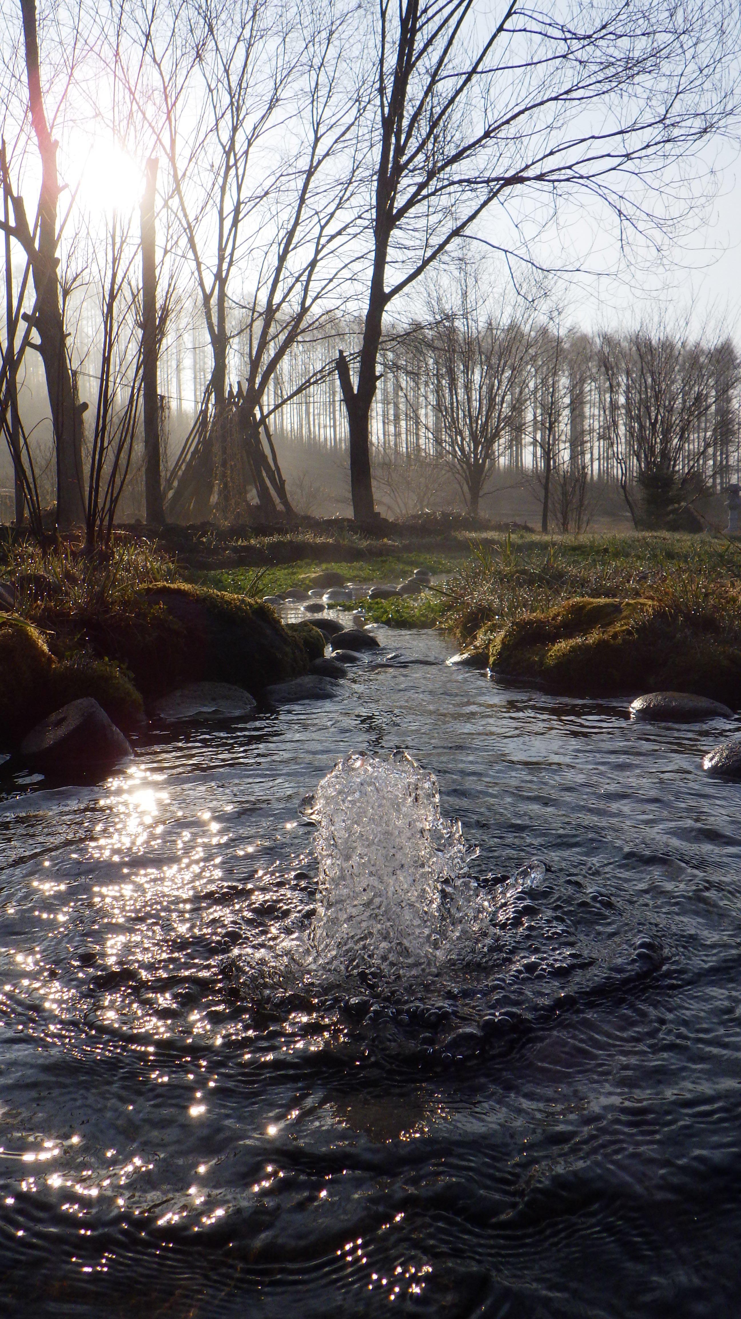 大雪山伏流水イノチの泉