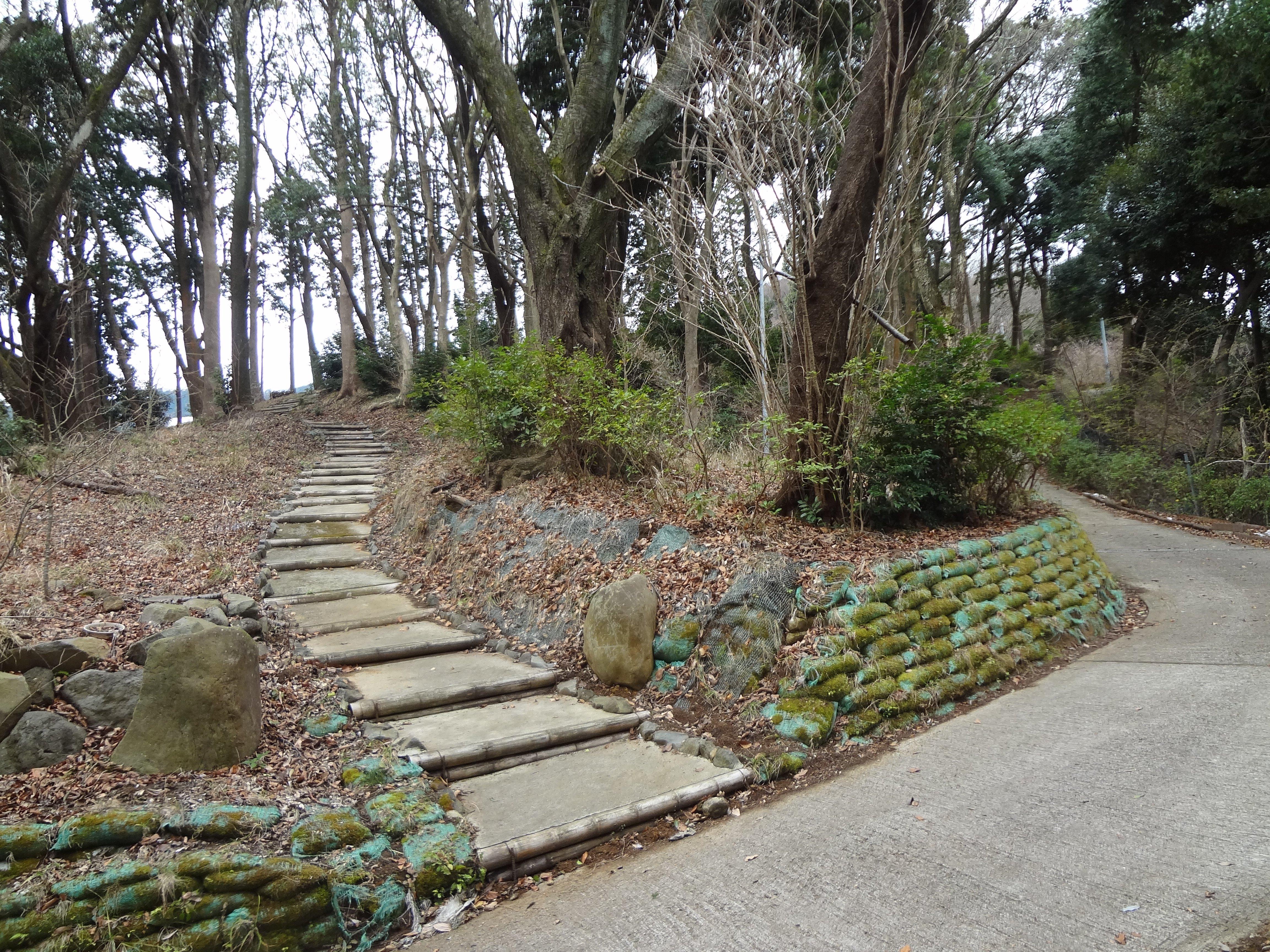 さらに進むと雑木林に入っていく階段
