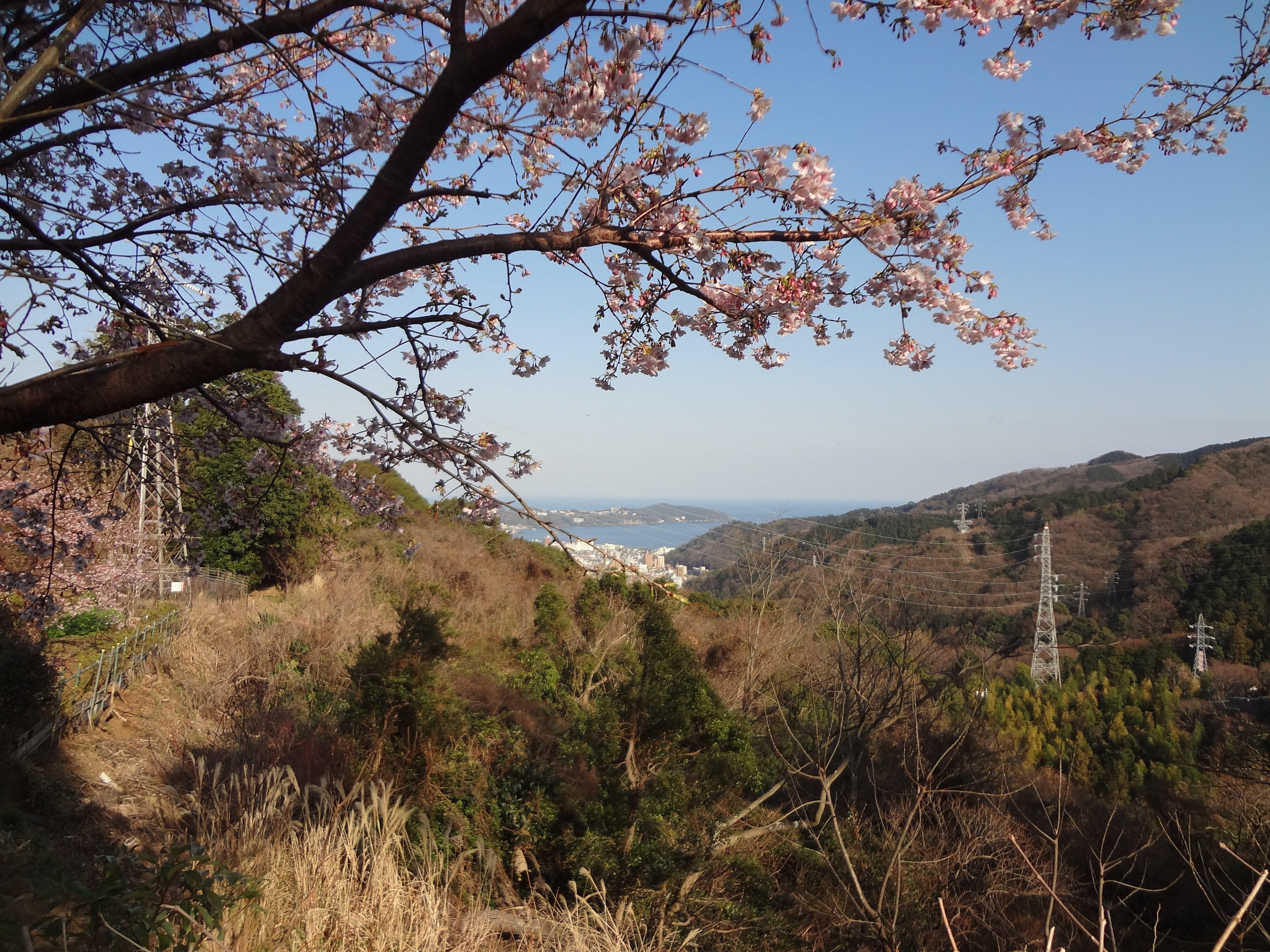 休憩所前のテラスから谷と海を見下ろす