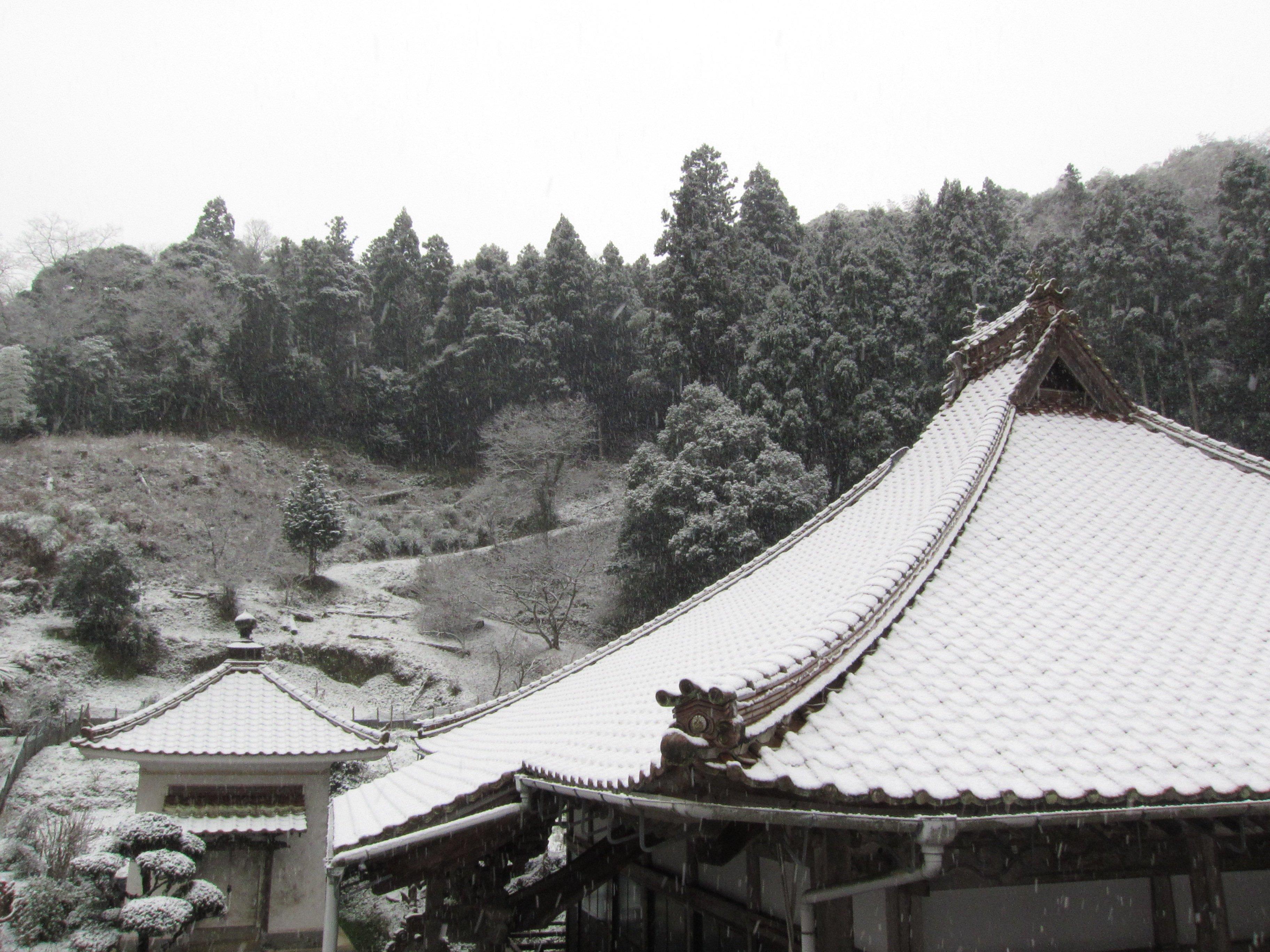 雪をのせる屋根