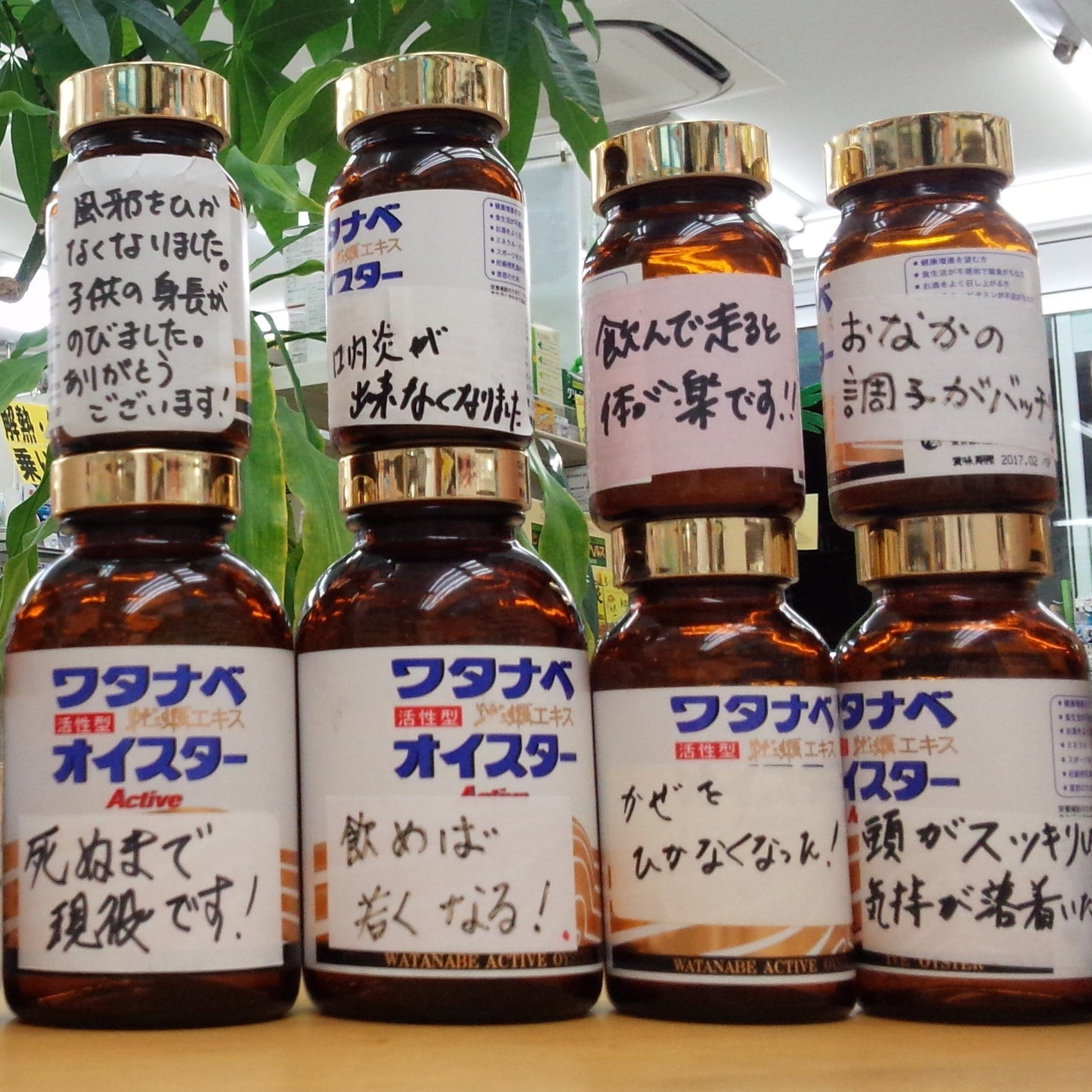 くすりのつつじ堂 静岡県草薙 取扱商品渡辺オイスター