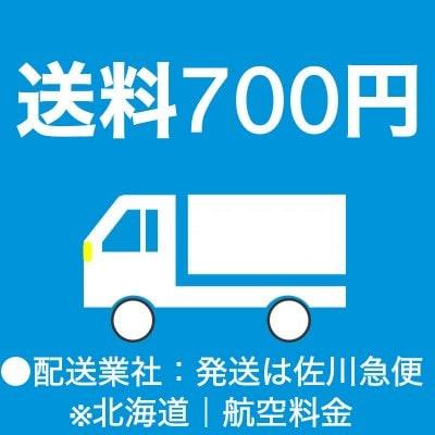 送料700円