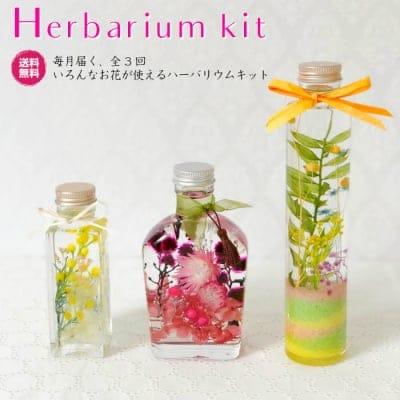 【 毎月届く いろんなお花が使える ハーバリウムキット 全3回 】 ポイント10%!【送料・消費税込】人気のハーバリウムをご自宅で作ってみませんか? プレゼントにも♪