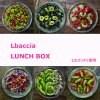 Lbaccia(エルパッチャ)専用【ランチボックス】LUNCH BOX