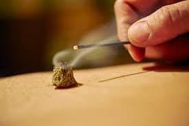 花粉症モニターのイメージその2