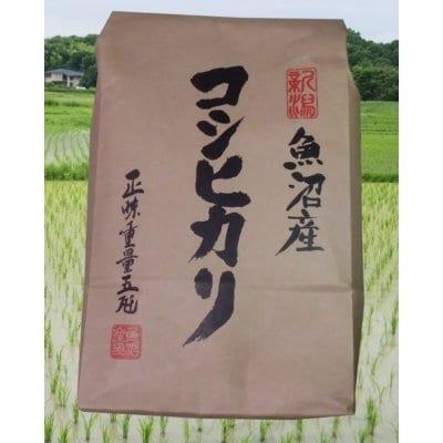 【精米済み】魚沼産コシヒカリ 10kg【送料無料】