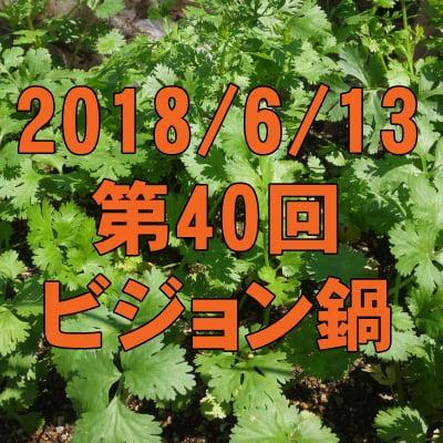 6/13 第40回ビジョン鍋: 新鮮自家製パクチー鍋で世界を鍋にする!